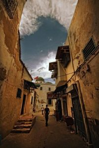 Zed Ben Miled photographie